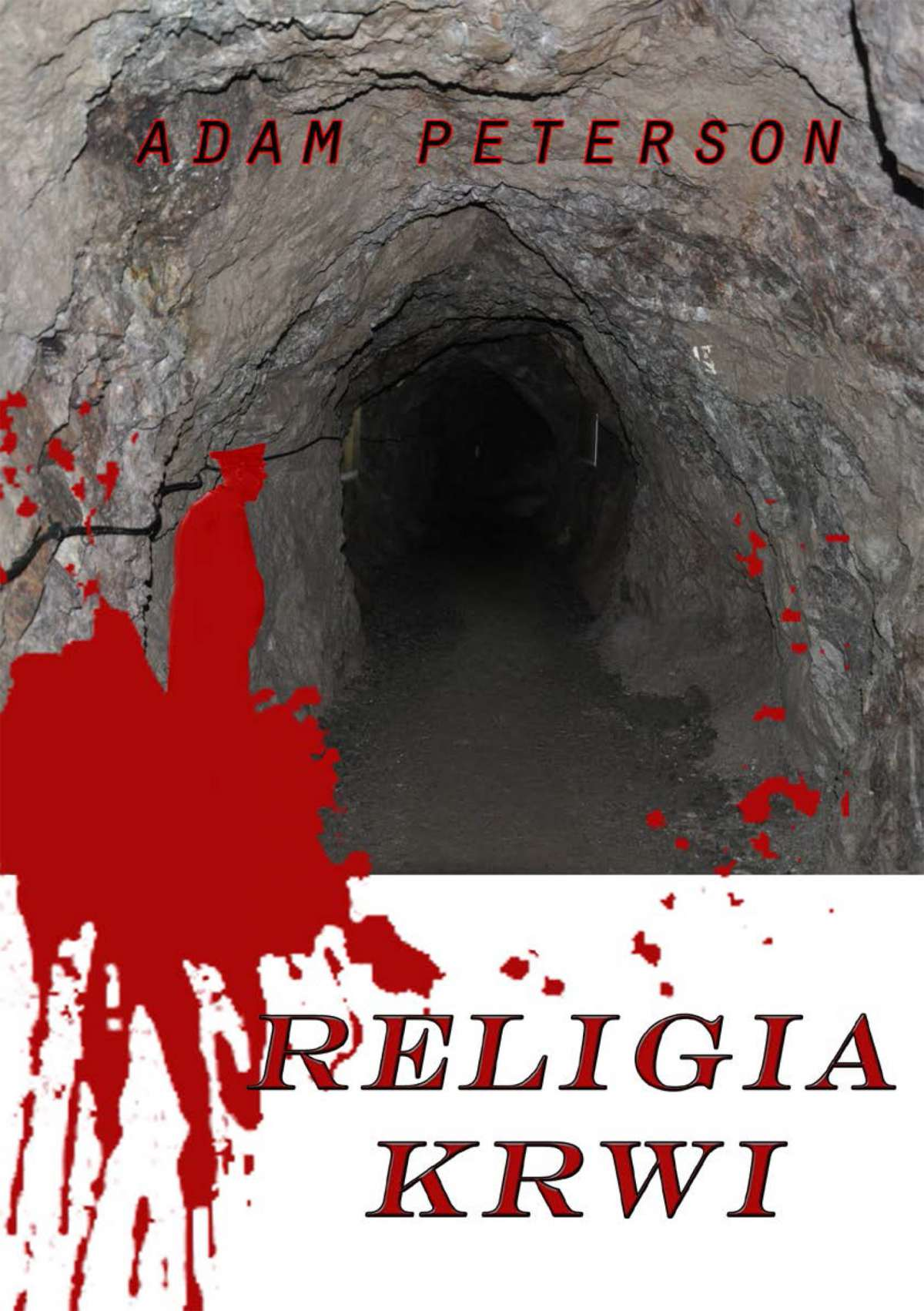 Religia krwi - Ebook (Książka EPUB) do pobrania w formacie EPUB