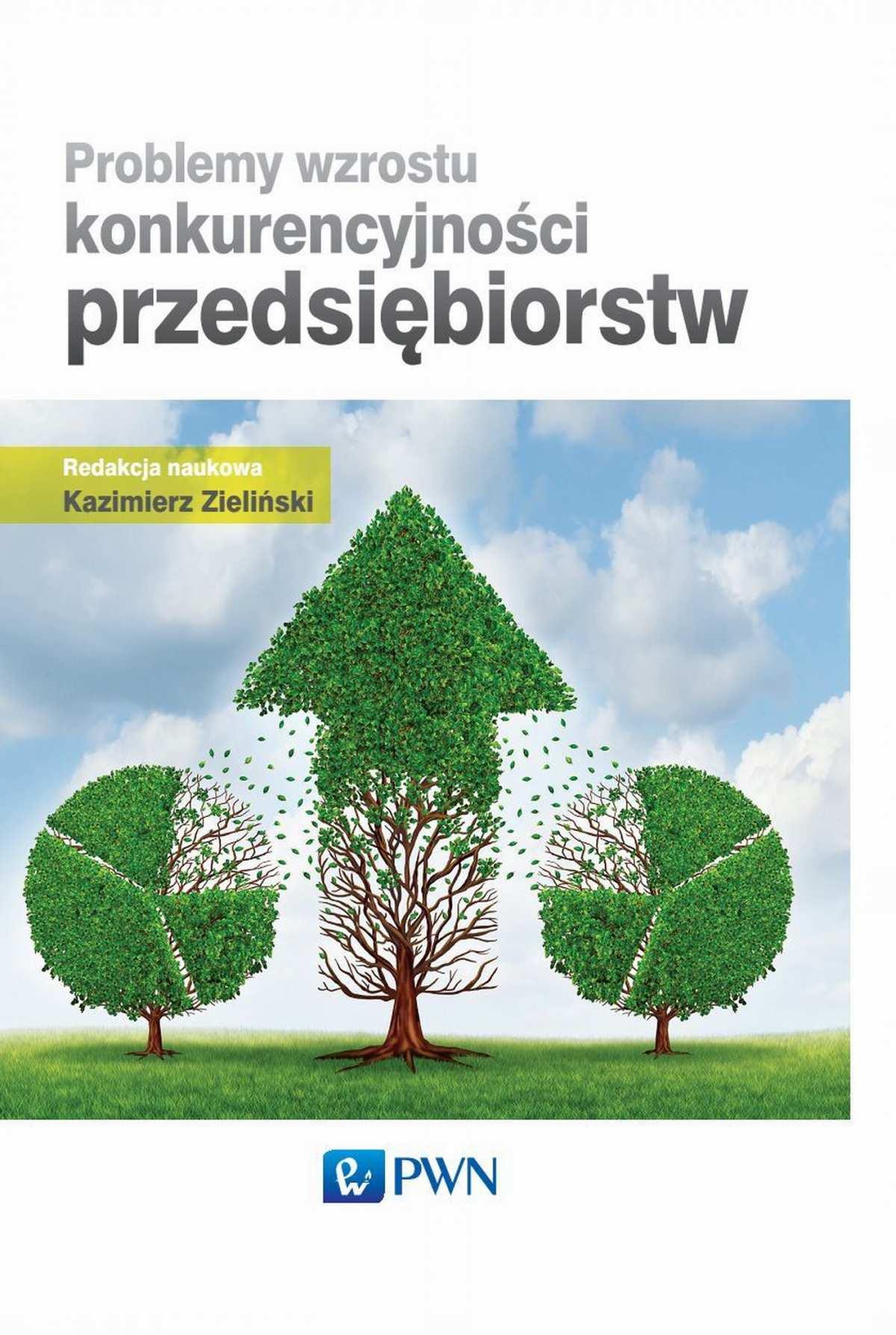 Problemy wzrostu konkurencyjności przedsiębiorstw - Ebook (Książka EPUB) do pobrania w formacie EPUB