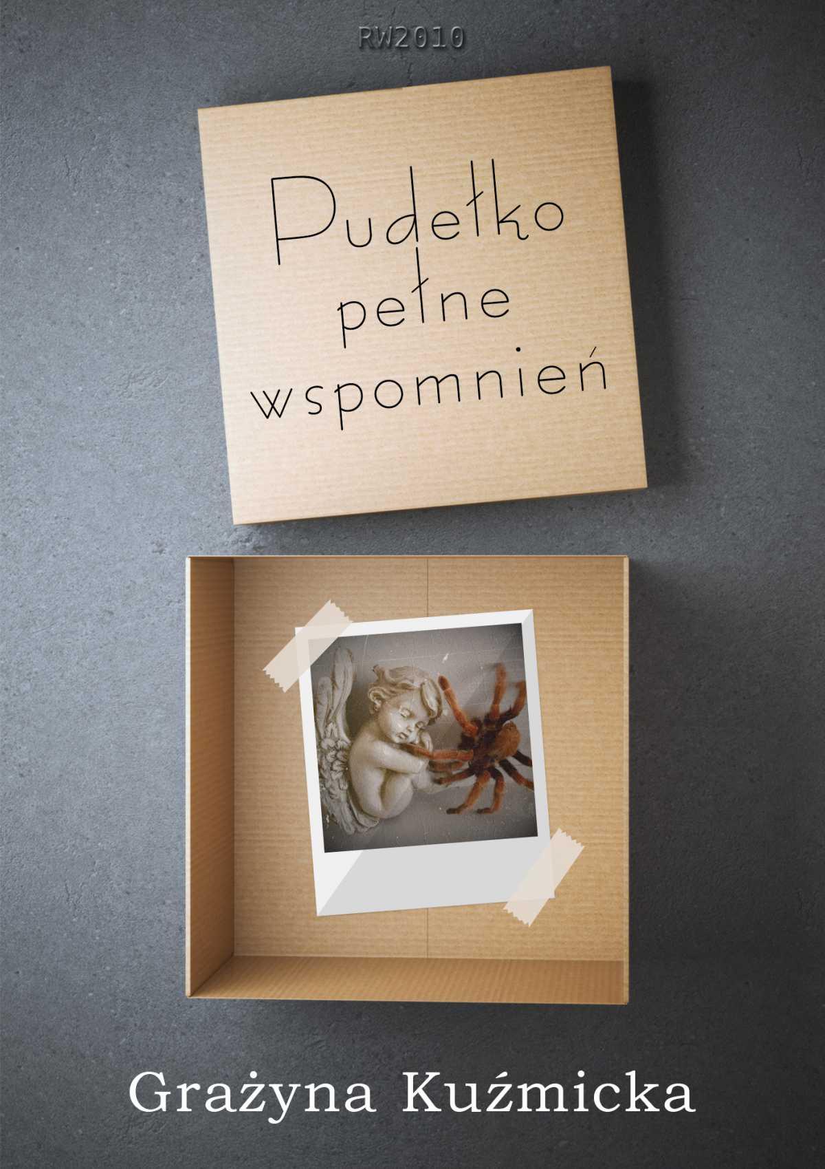 Pudełko pełne wspomnień - Ebook (Książka EPUB) do pobrania w formacie EPUB