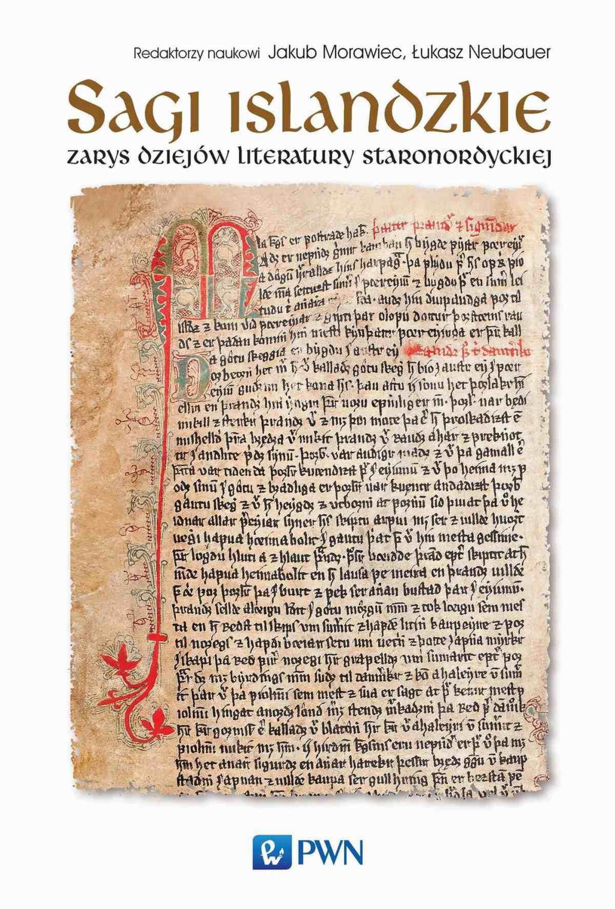 Sagi islandzkie. Zarys dziejów literatury staronordyckiej - Ebook (Książka na Kindle) do pobrania w formacie MOBI