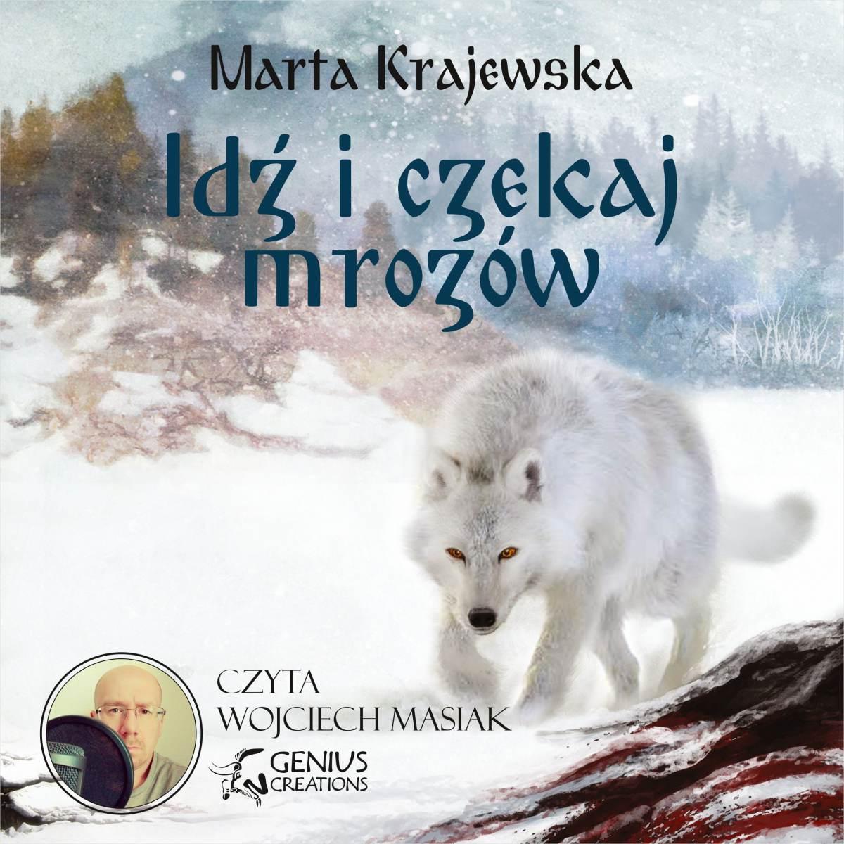 Idź i czekaj mrozów - Audiobook (Książka audio MP3) do pobrania w całości w archiwum ZIP