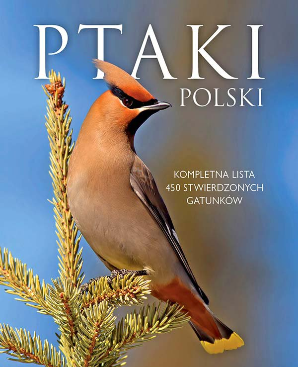 Ptaki Polski - Ebook (Książka PDF) do pobrania w formacie PDF
