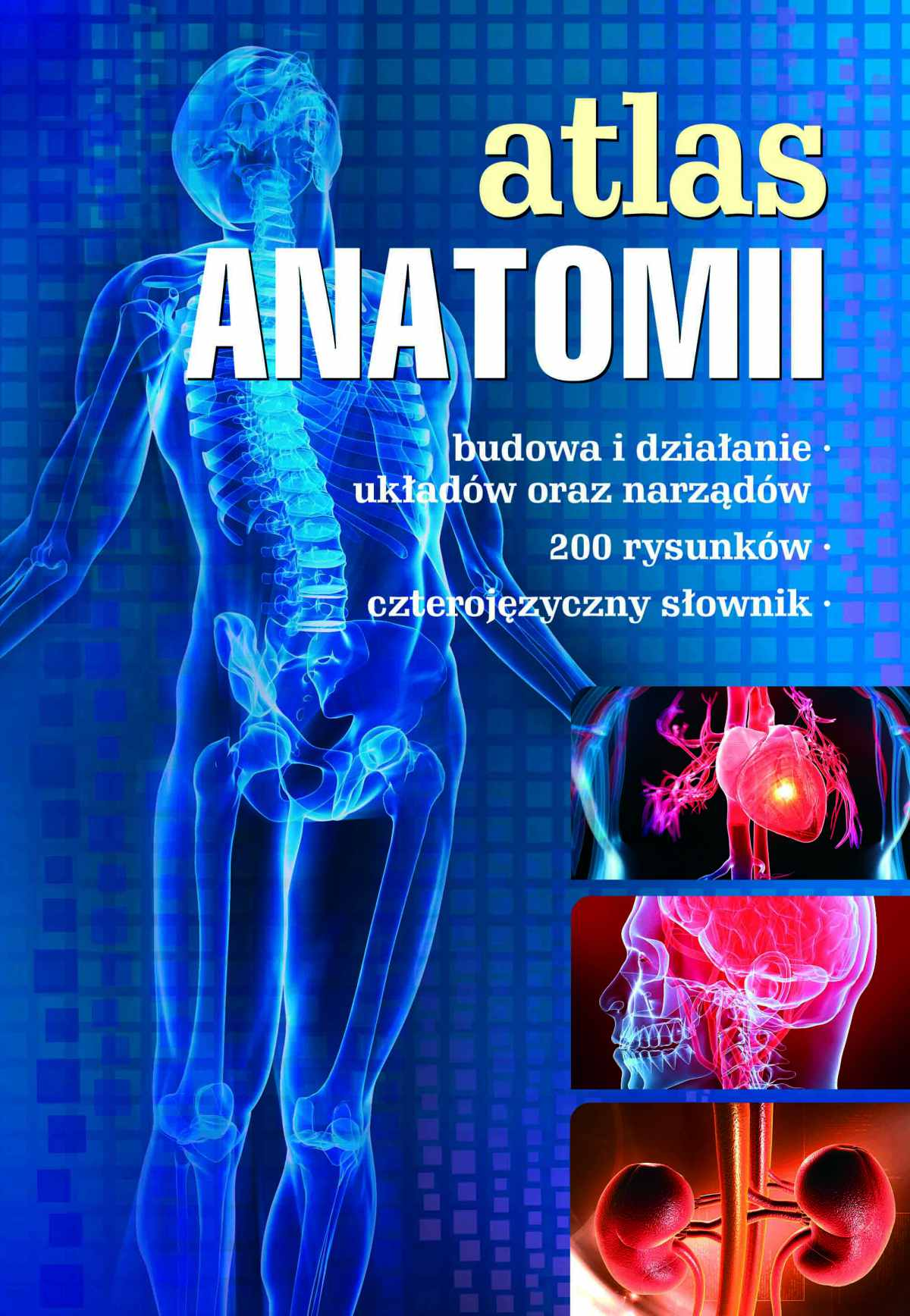 Atlas anatomii - Ebook (Książka PDF) do pobrania w formacie PDF