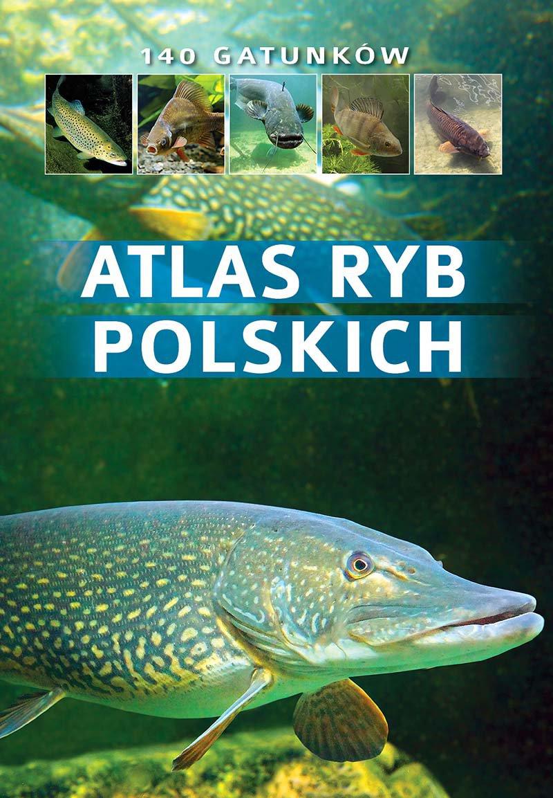 Atlas ryb polskich - Ebook (Książka PDF) do pobrania w formacie PDF