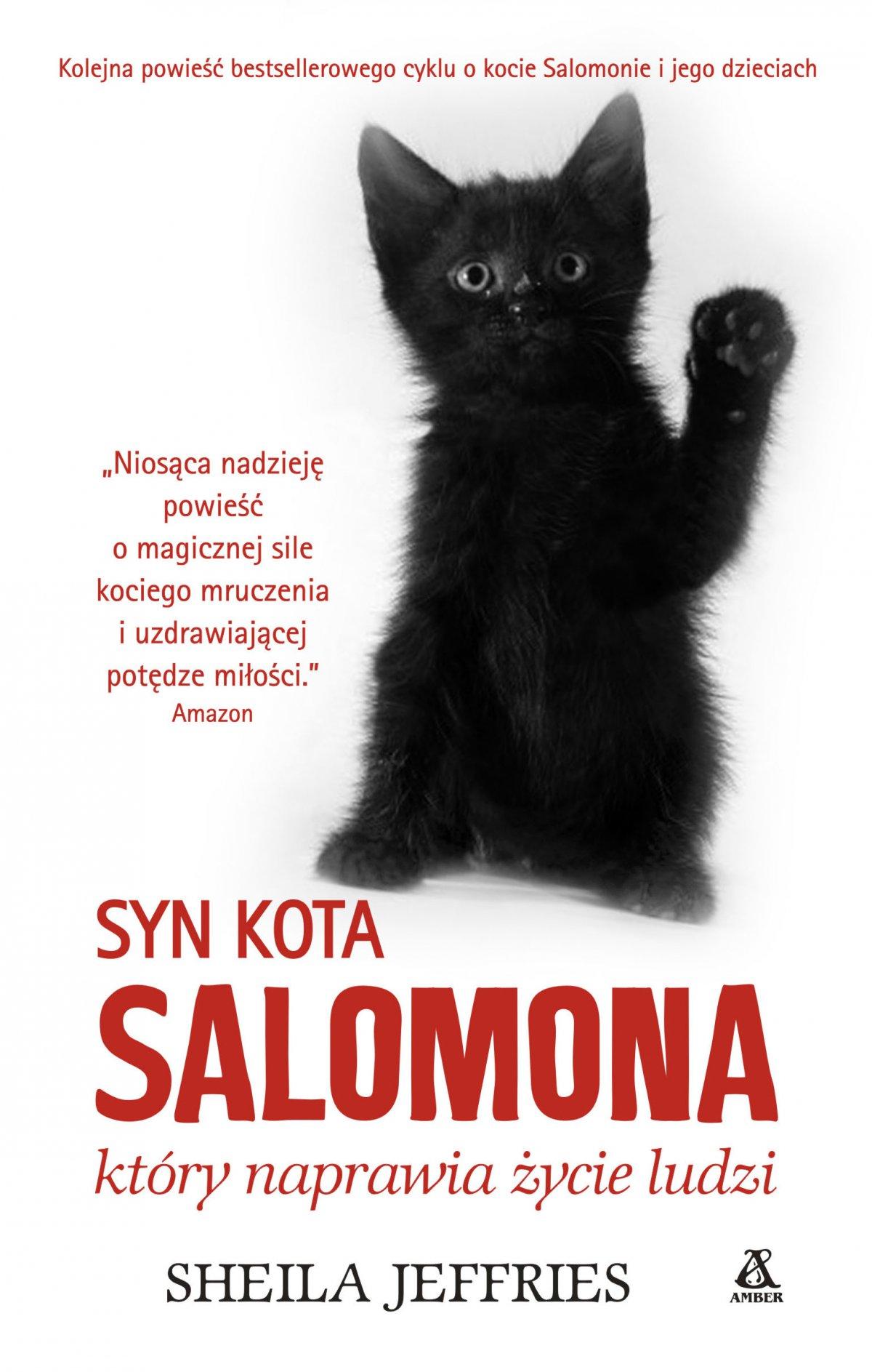 Syn kota Salomona, który naprawia życie ludzi - Ebook (Książka EPUB) do pobrania w formacie EPUB
