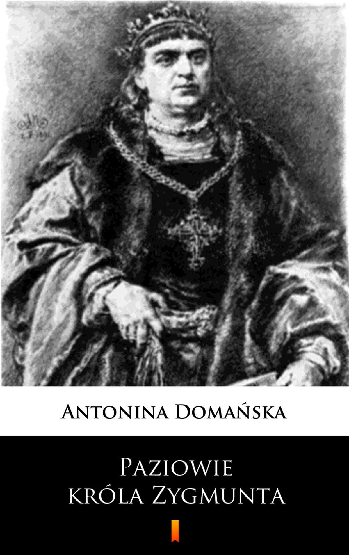 Paziowie króla Zygmunta - Ebook (Książka na Kindle) do pobrania w formacie MOBI