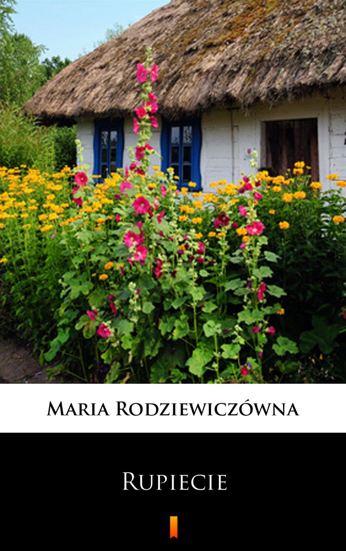 Rupiecie - Ebook (Książka na Kindle) do pobrania w formacie MOBI