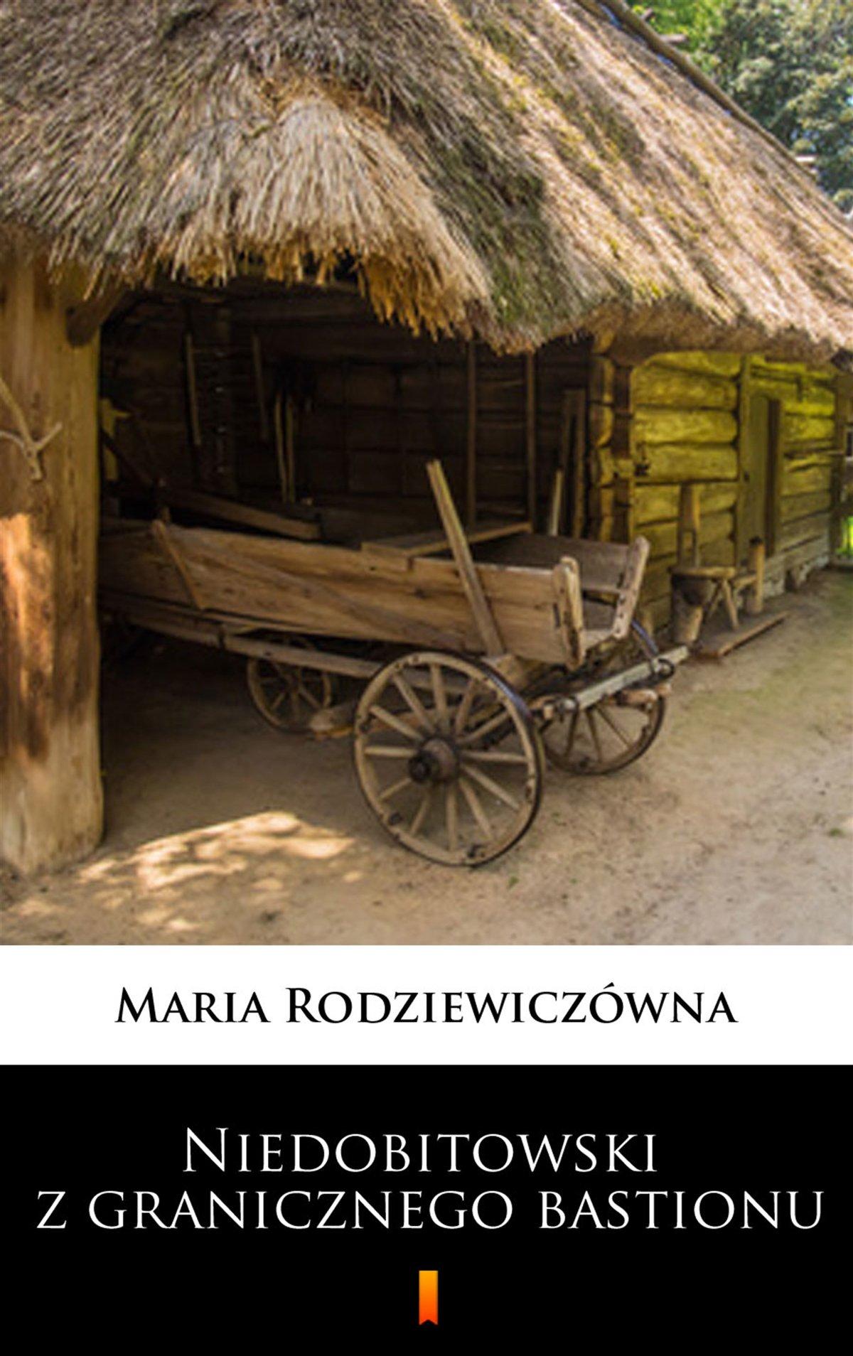 Niedobitowski z granicznego bastionu - Ebook (Książka na Kindle) do pobrania w formacie MOBI