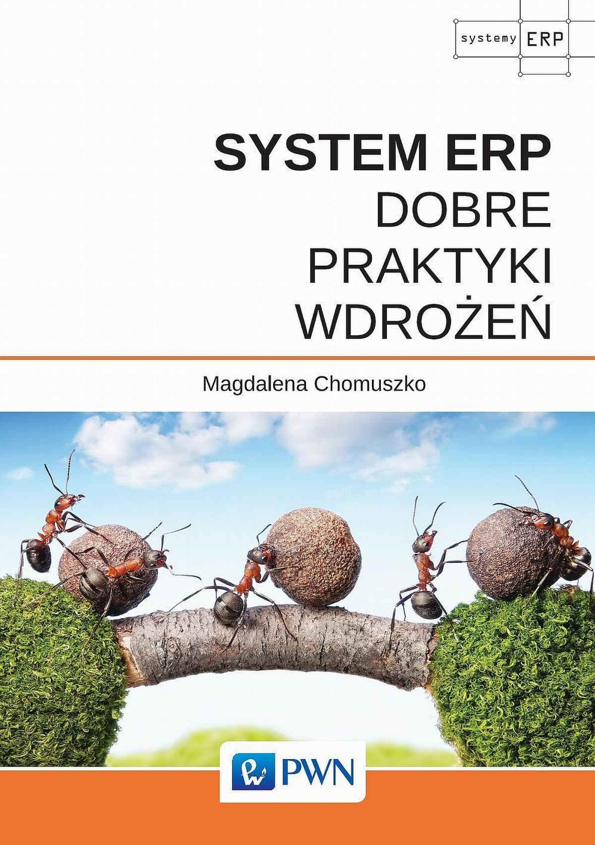 System ERP - Dobre praktyki wdrożeń - Ebook (Książka EPUB) do pobrania w formacie EPUB