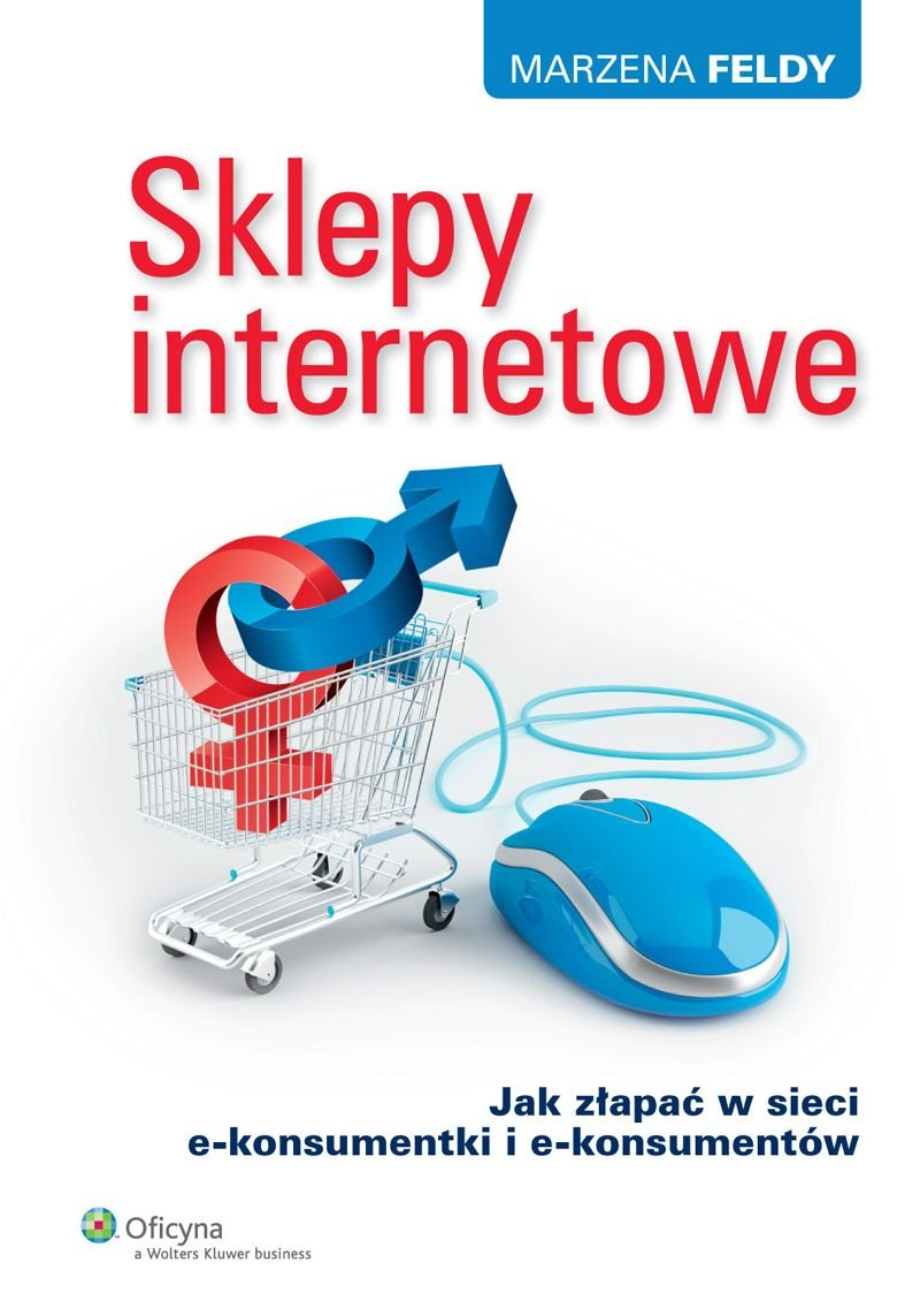 Sklepy internetowe. Jak złapać w sieci e-konsumentki i e-konsumentów - Ebook (Książka EPUB) do pobrania w formacie EPUB