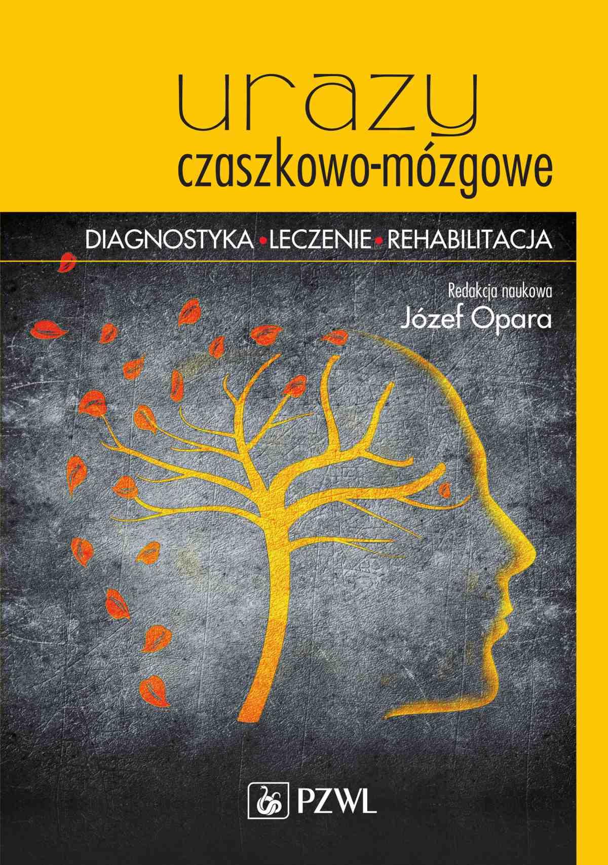 Urazy czaszkowo-mózgowe - Ebook (Książka na Kindle) do pobrania w formacie MOBI