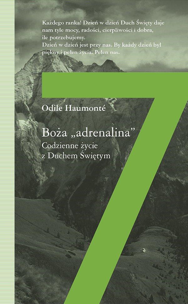 """Boża """"adrenalina"""" - Ebook (Książka EPUB) do pobrania w formacie EPUB"""