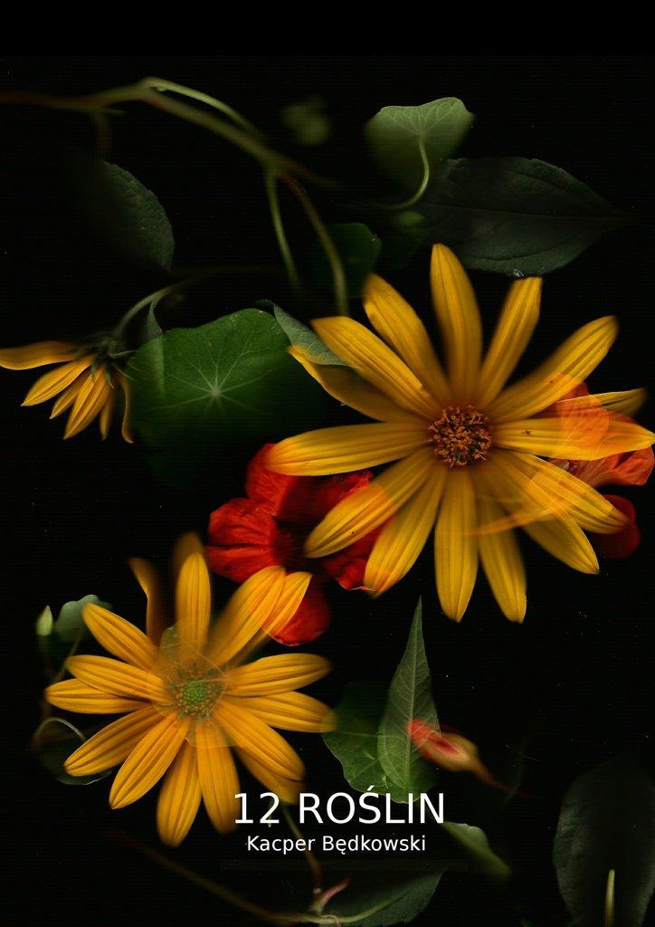 12 Roślin - Ebook (Książka EPUB) do pobrania w formacie EPUB
