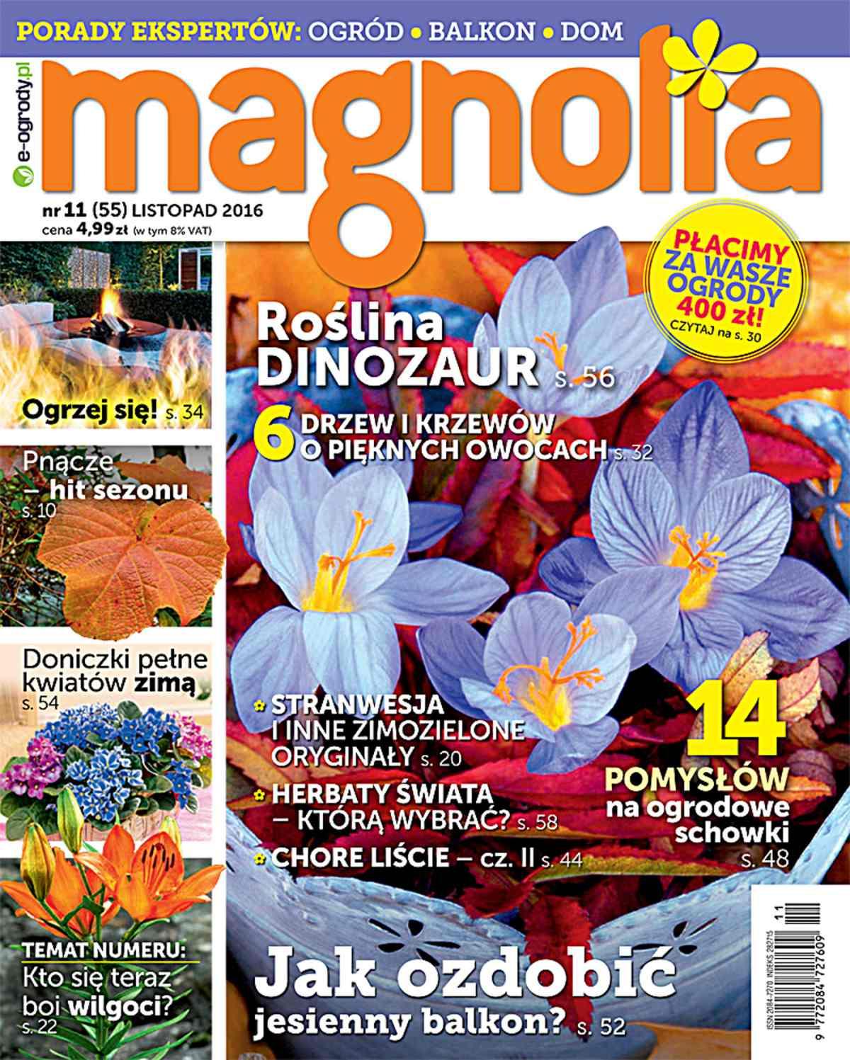 Magnolia 11/2016 - Ebook (Książka PDF) do pobrania w formacie PDF