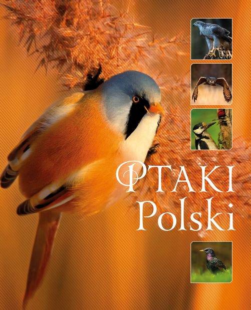 Ptaki Polski (Wyd. 2016) - Ebook (Książka PDF) do pobrania w formacie PDF