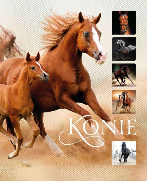 Konie - Ebook (Książka PDF) do pobrania w formacie PDF