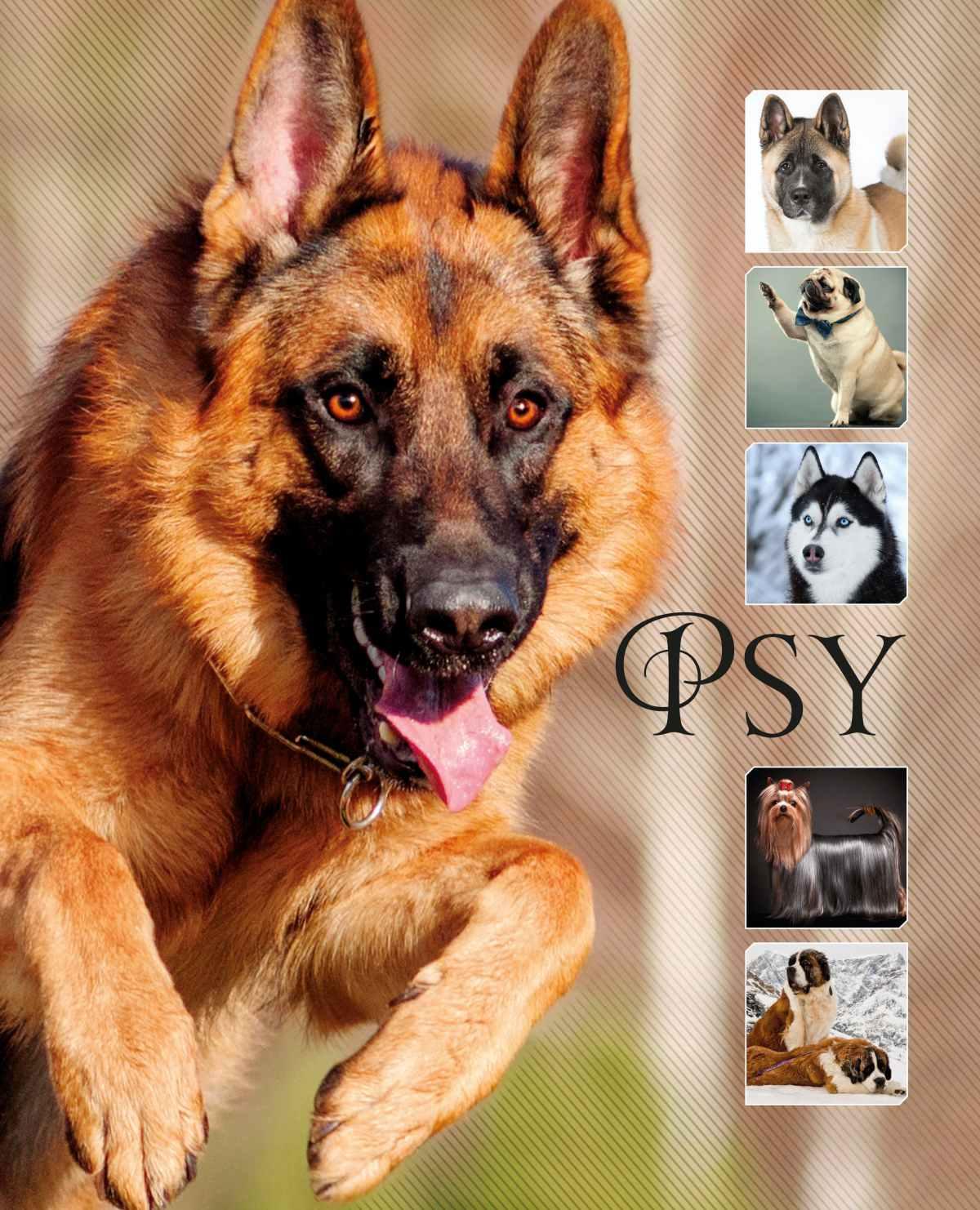 Psy - Ebook (Książka PDF) do pobrania w formacie PDF