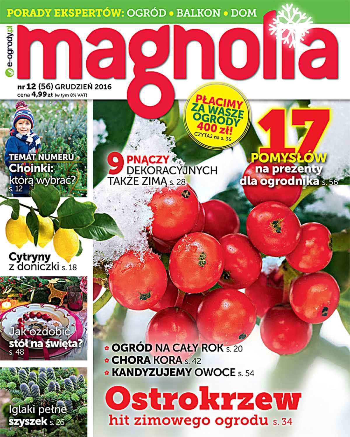 Magnolia 12/2016 - Ebook (Książka PDF) do pobrania w formacie PDF