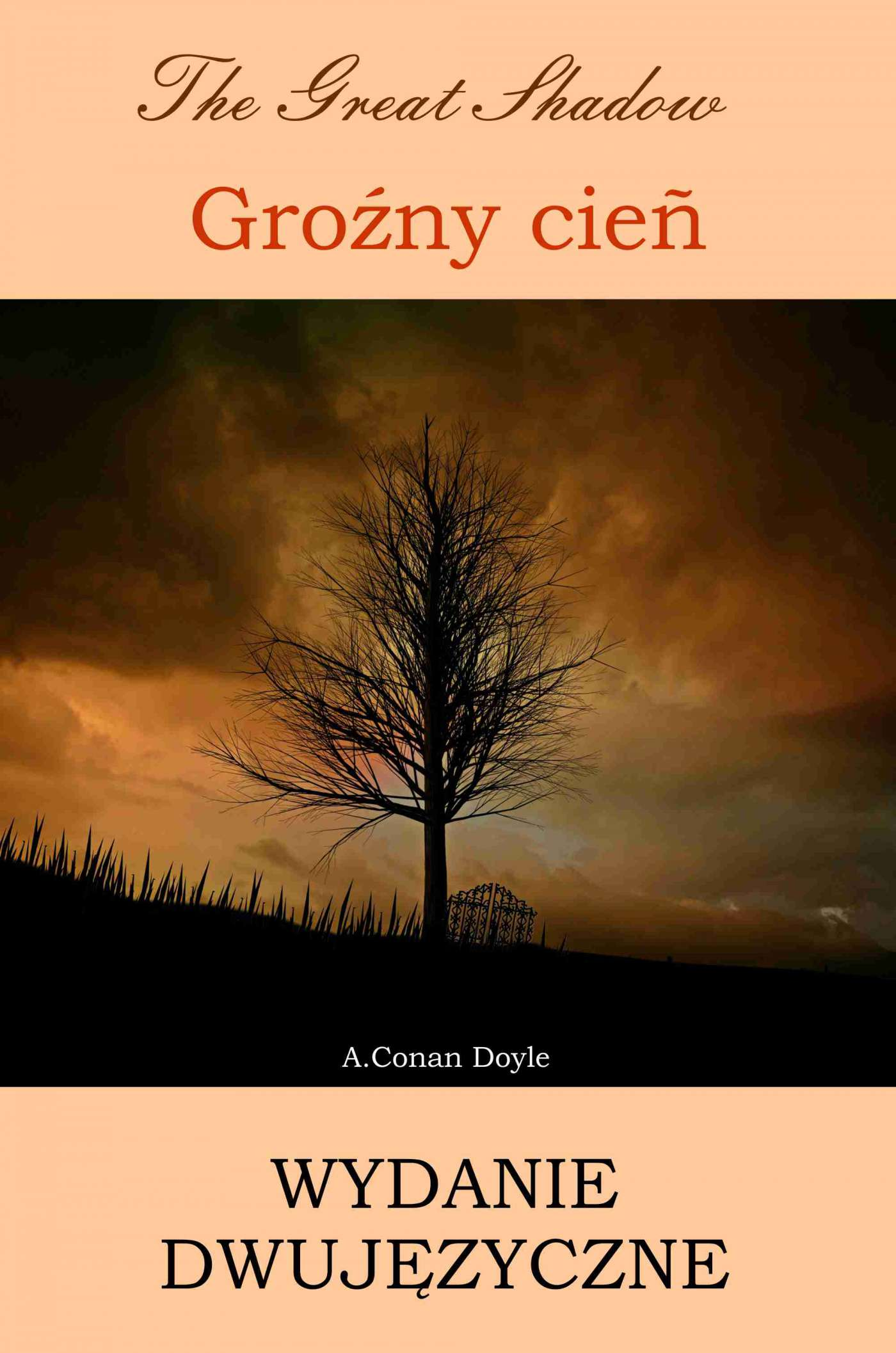 Groźny cień. Wydanie dwujęzyczne angielsko-polskie - Ebook (Książka PDF) do pobrania w formacie PDF