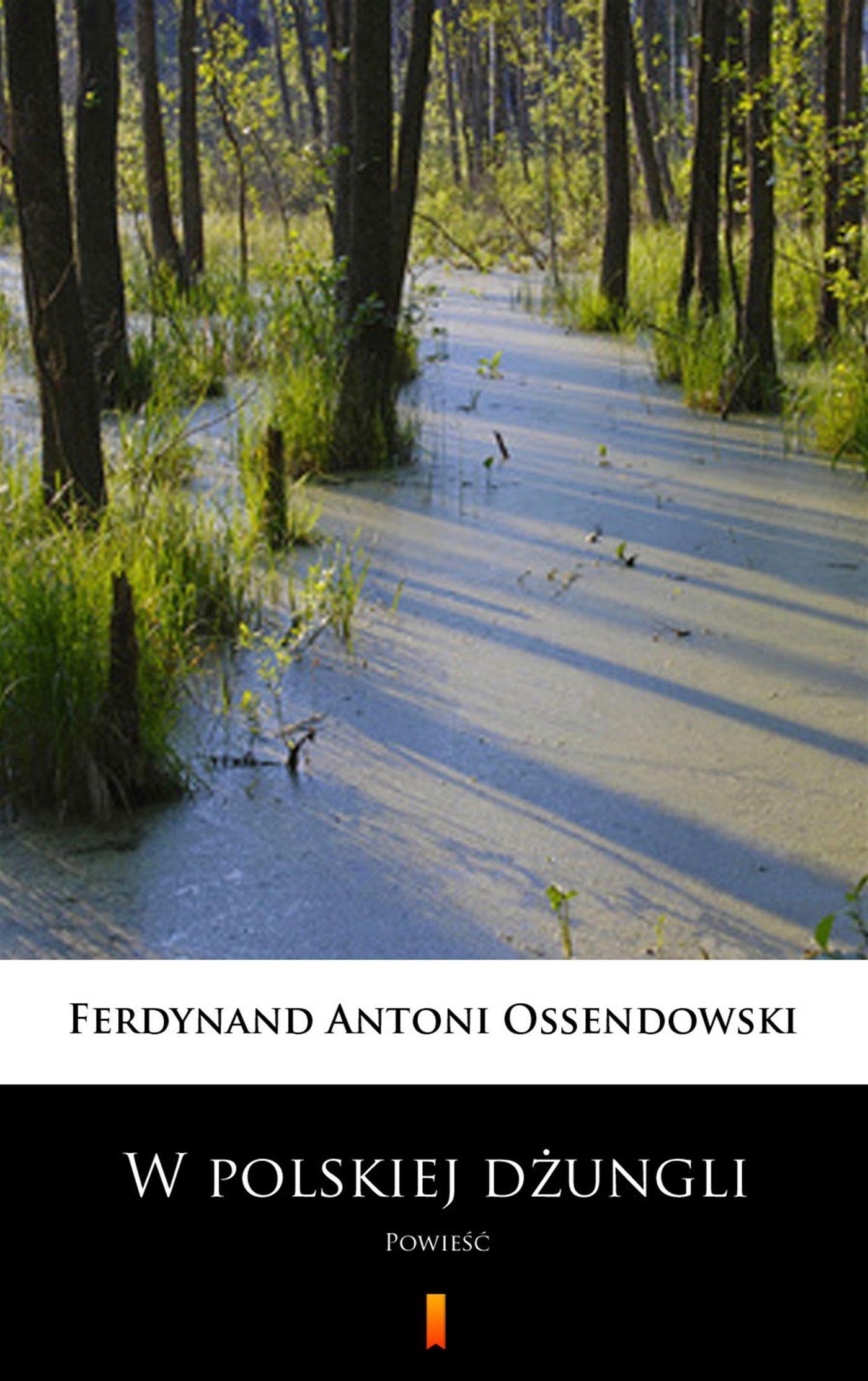 W polskiej dżungli - Ebook (Książka na Kindle) do pobrania w formacie MOBI