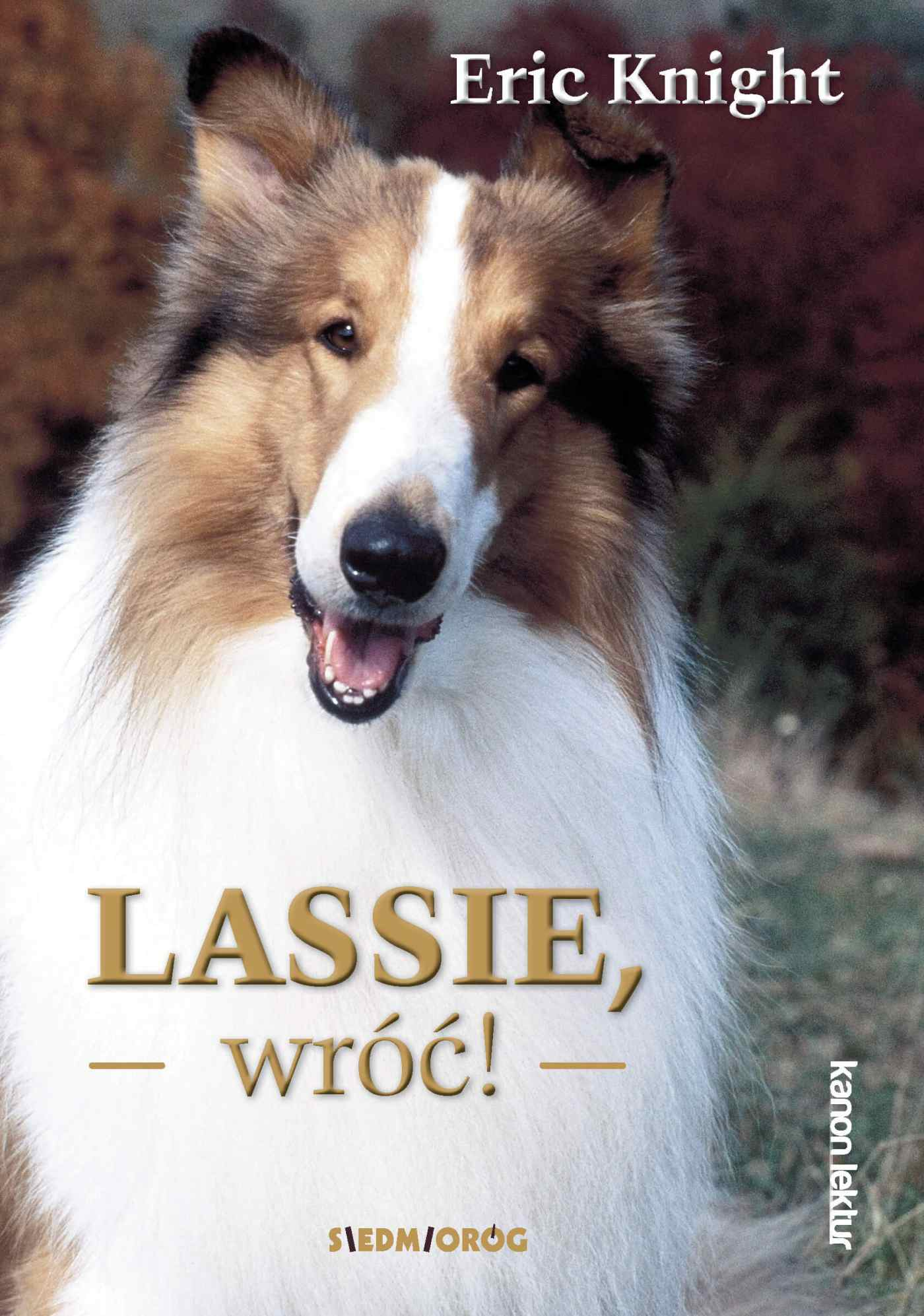 Lassie,wróć! - Ebook (Książka EPUB) do pobrania w formacie EPUB