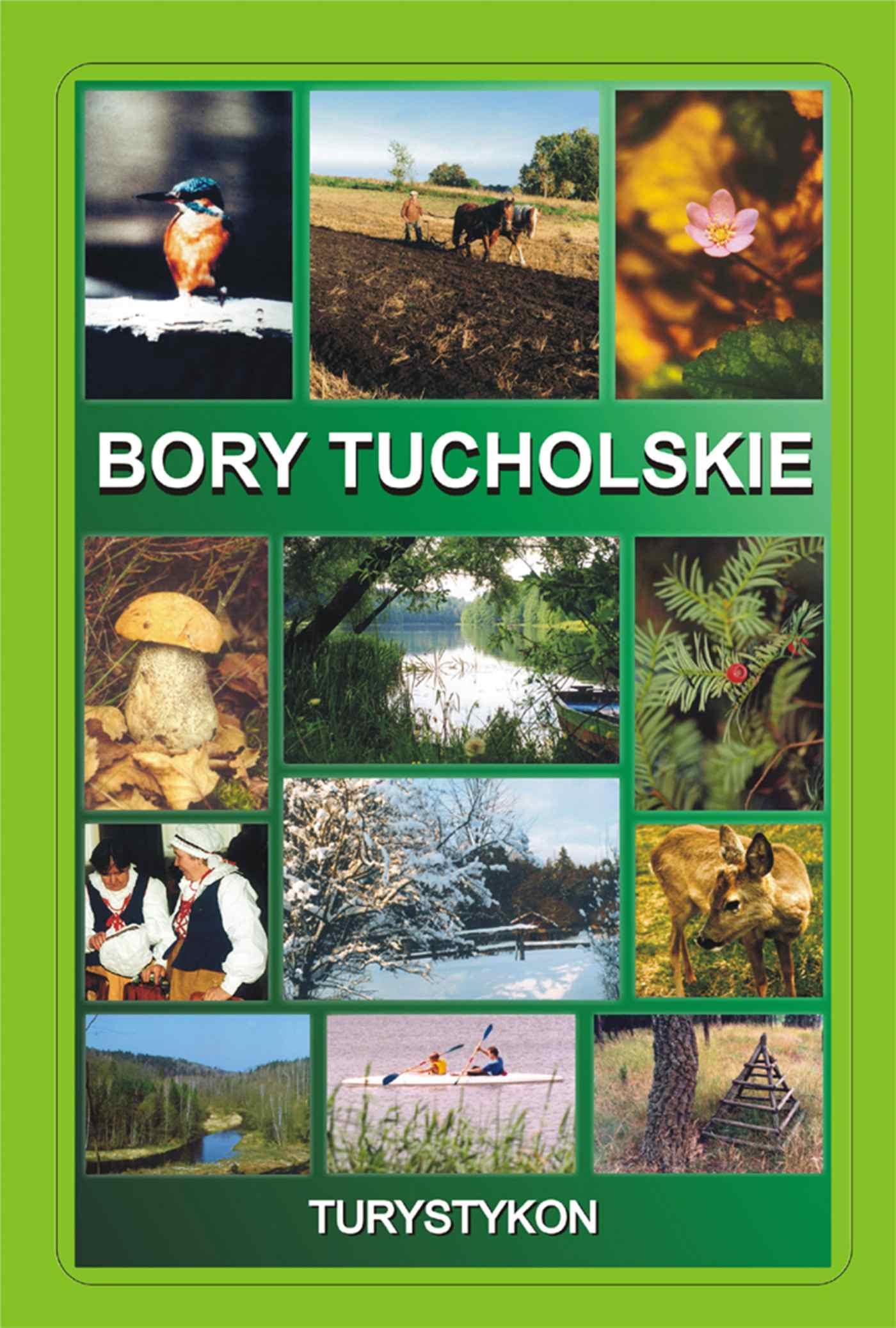 Bory Tucholskie. Turystykon - Ebook (Książka PDF) do pobrania w formacie PDF