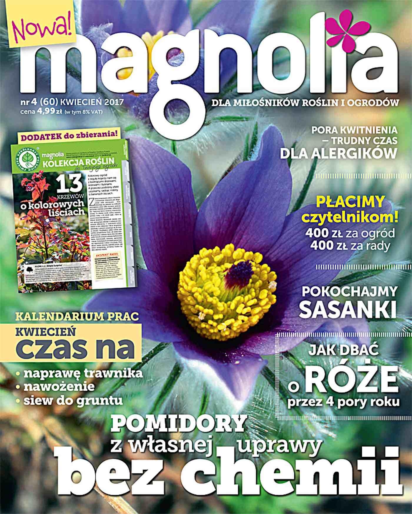 Magnolia 4/2017 - Ebook (Książka PDF) do pobrania w formacie PDF