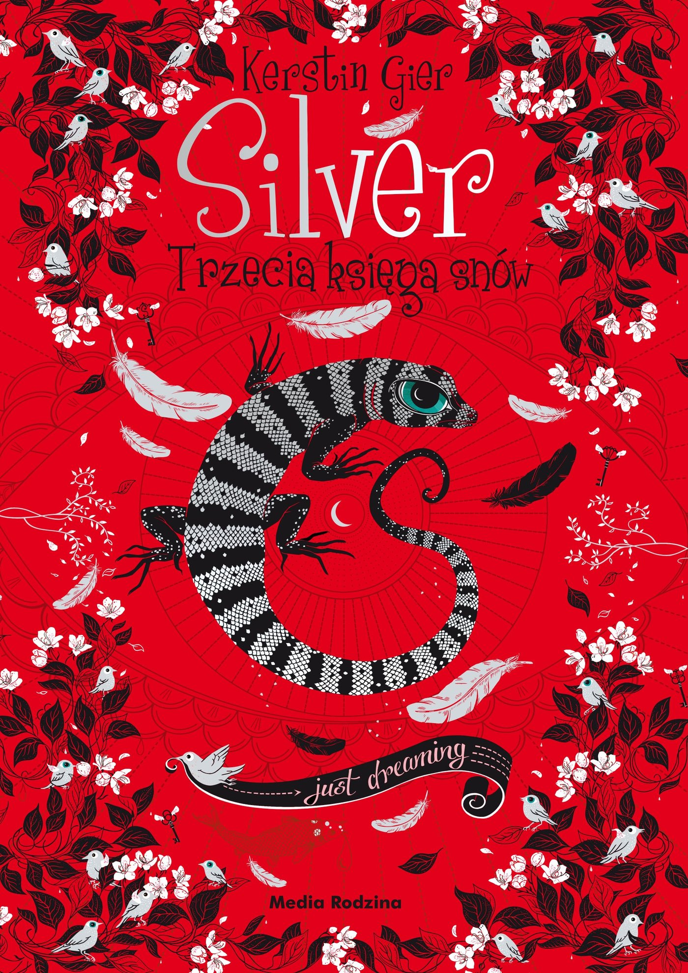 Silver - trzecia księga snów - Ebook (Książka EPUB) do pobrania w formacie EPUB