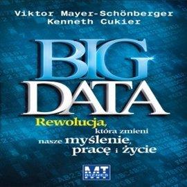 Big Data - Audiobook (Książka audio MP3) do pobrania w całości w archiwum ZIP