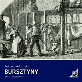 Bursztyny - Audiobook (Książka audio MP3) do pobrania w całości w archiwum ZIP