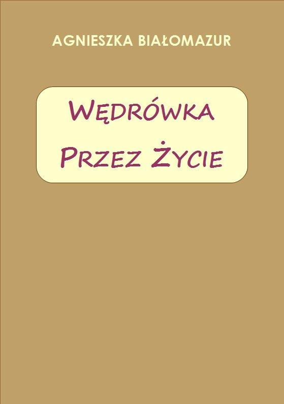 Wędrówka przez życie - Ebook (Książka PDF) do pobrania w formacie PDF