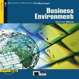 Business Environment - Audiobook (Książka audio MP3) do pobrania w całości w archiwum ZIP