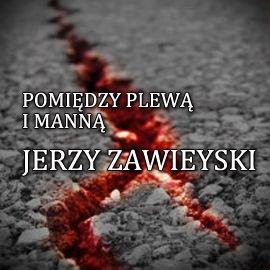 Pomiędzy plewą i manną - Audiobook (Książka audio MP3) do pobrania w całości w archiwum ZIP