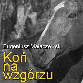 Koń na wzgórzu - Audiobook (Książka audio MP3) do pobrania w całości w archiwum ZIP