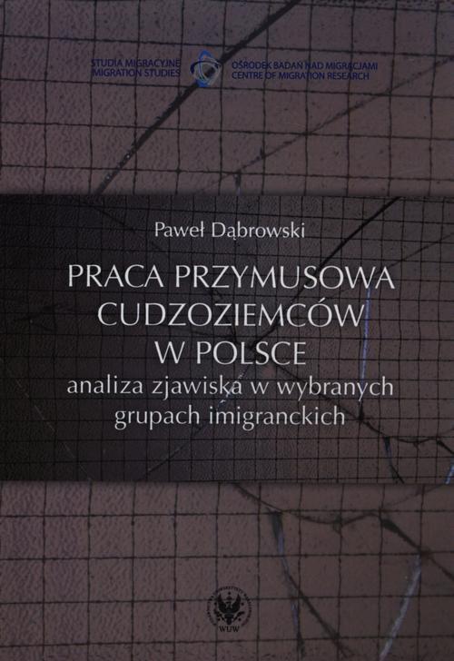 Praca przymusowa cudzoziemców w Polsce - Ebook (Książka PDF) do pobrania w formacie PDF