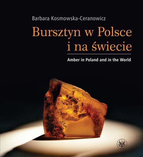 Bursztyn w Polsce i na świecie. Amber in Poland and in the World - Ebook (Książka PDF) do pobrania w formacie PDF