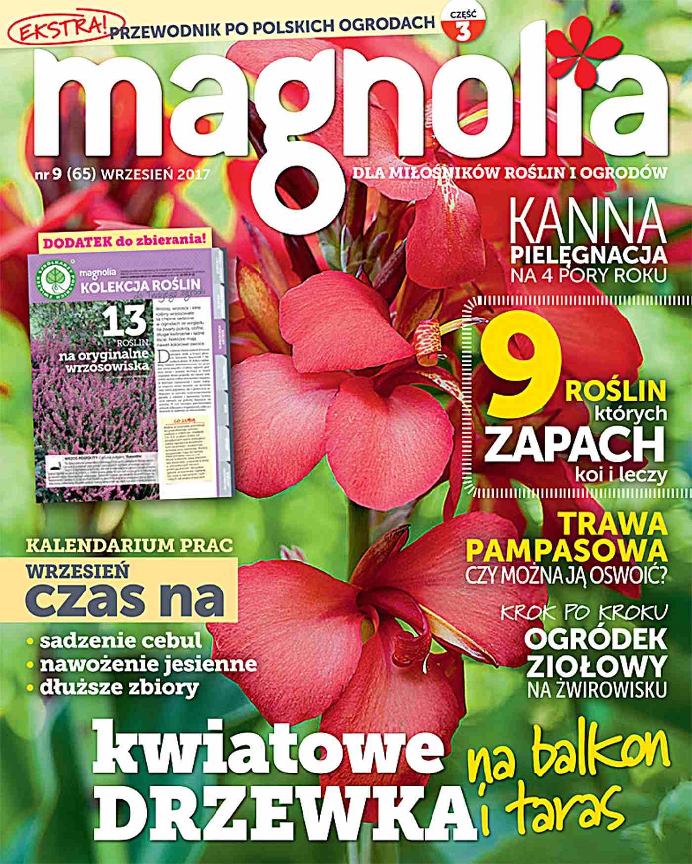 Magnolia 9/2017 - Ebook (Książka PDF) do pobrania w formacie PDF