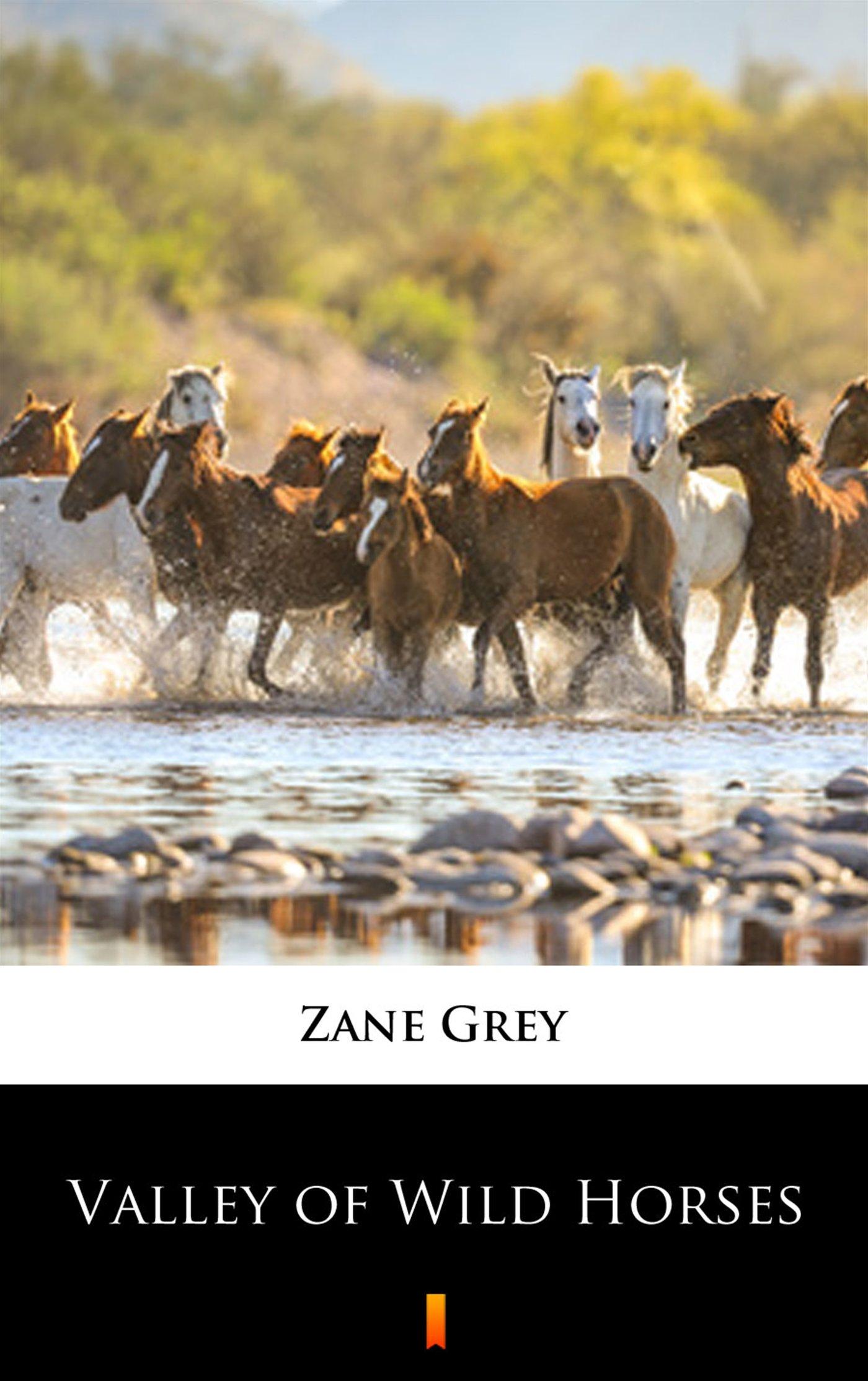 Valley of Wild Horses - Ebook (Książka na Kindle) do pobrania w formacie MOBI
