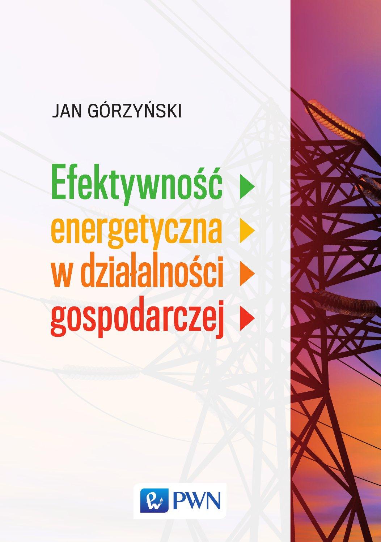 Efektywność energetyczna w działalności gospodarczej - Ebook (Książka EPUB) do pobrania w formacie EPUB