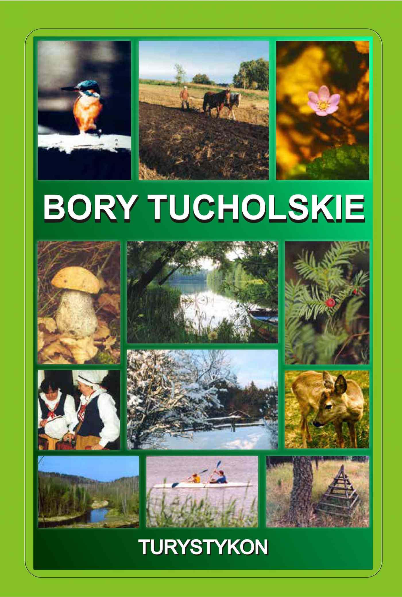 Bory Tucholskie - Ebook (Książka PDF) do pobrania w formacie PDF