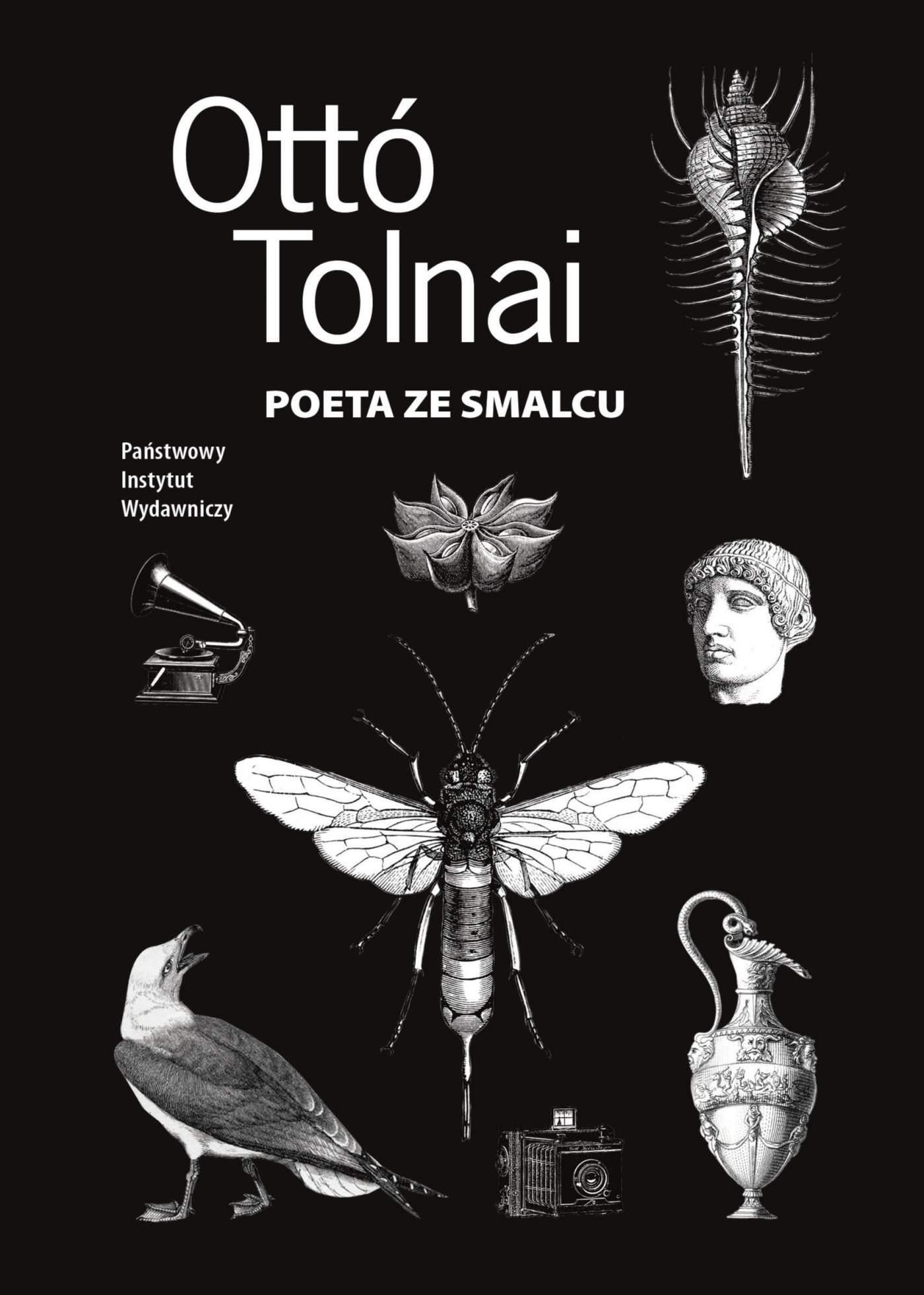 Poeta ze smalcu - Ebook (Książka EPUB) do pobrania w formacie EPUB