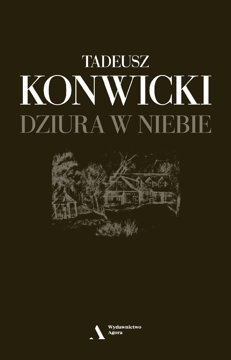 Dziura w niebie - Ebook (Książka na Kindle) do pobrania w formacie MOBI
