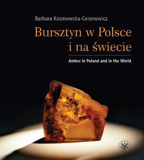 Bursztyn w Polsce i na świecie - Ebook (Książka PDF) do pobrania w formacie PDF