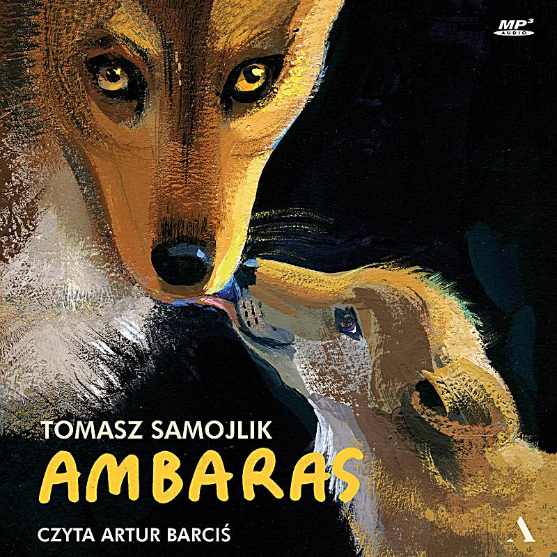 Ambaras - Audiobook (Książka audio MP3) do pobrania w całości w archiwum ZIP