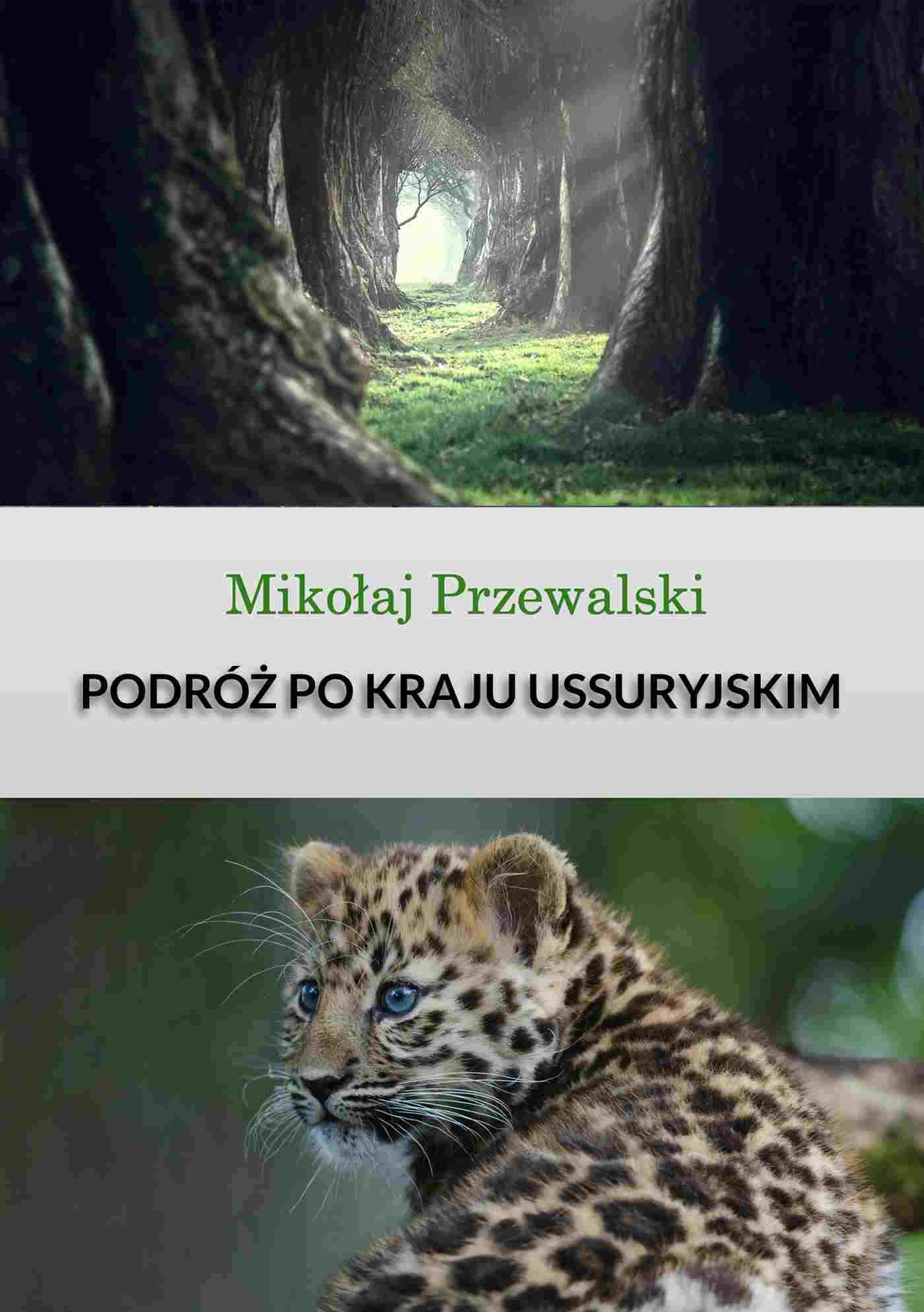 Podróż po kraju Ussyryjskim - Ebook (Książka EPUB) do pobrania w formacie EPUB