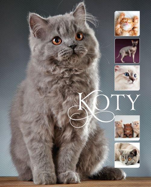 Koty - Ebook (Książka PDF) do pobrania w formacie PDF