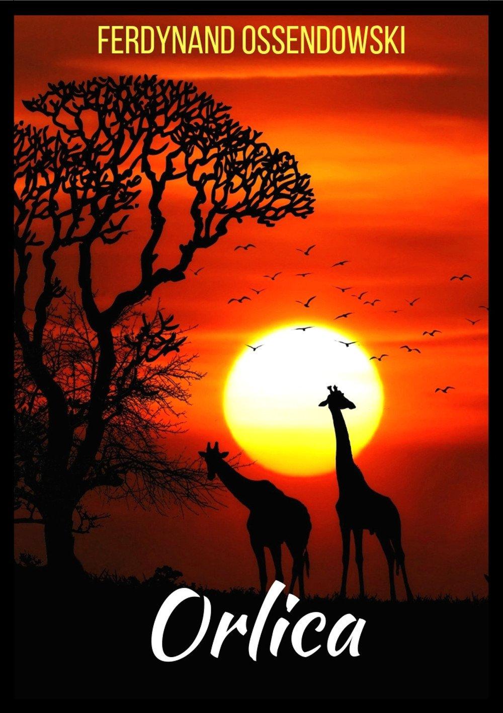 Orlica - Ebook (Książka na Kindle) do pobrania w formacie MOBI
