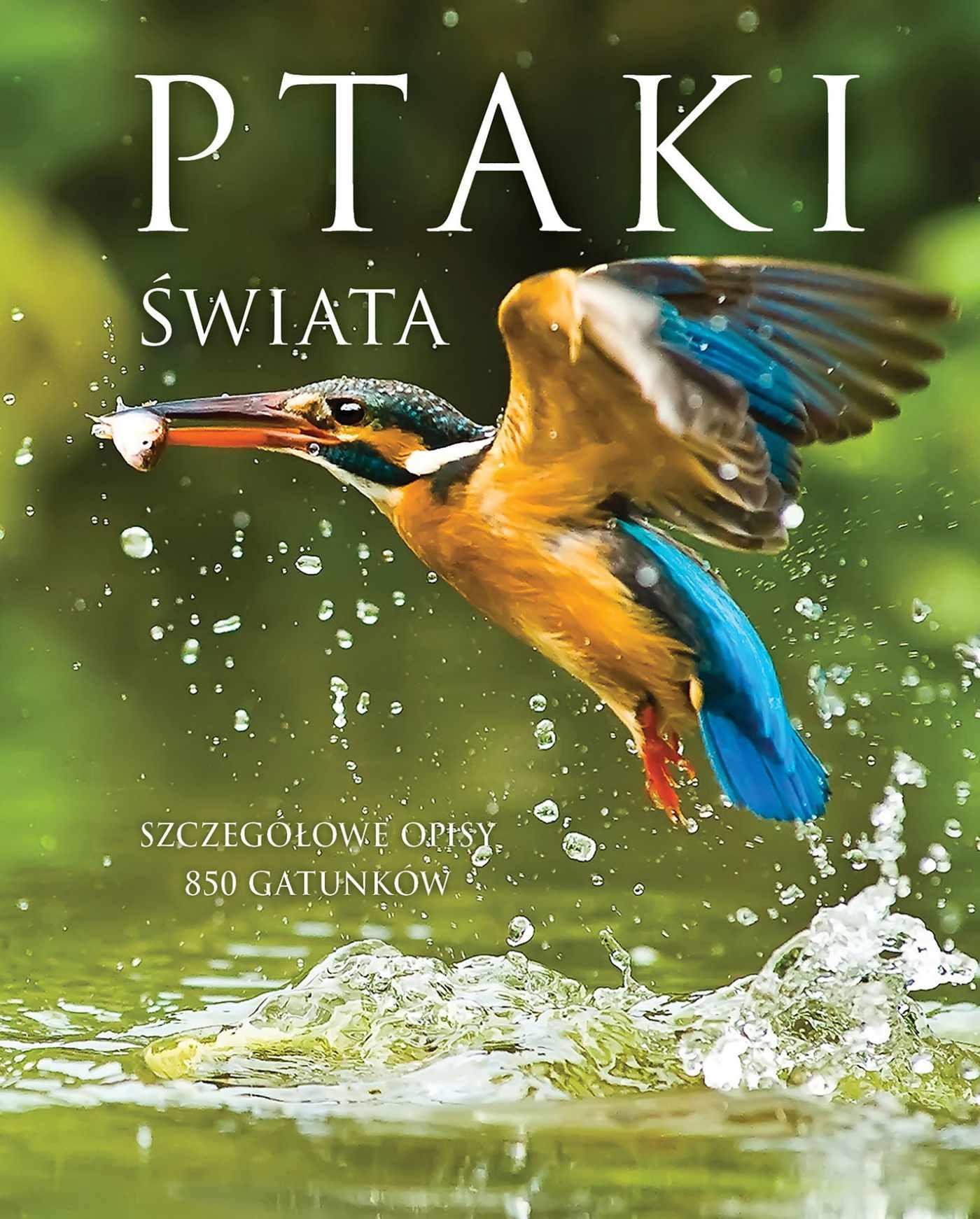 Ptaki Świata - Ebook (Książka PDF) do pobrania w formacie PDF