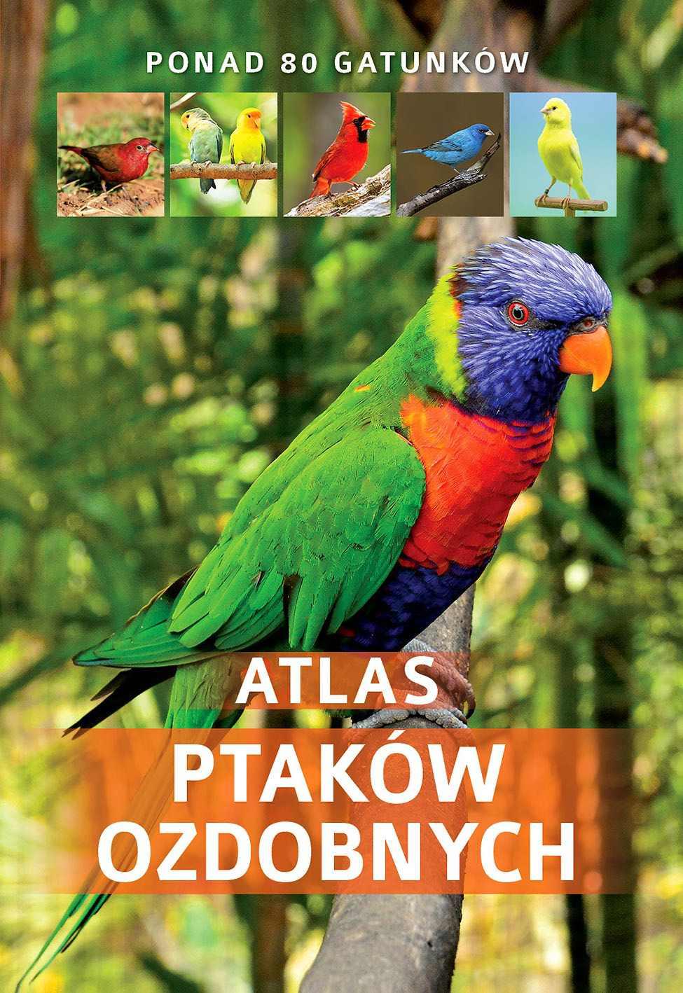 Atlas Ptaków Ozdobnych - Ebook (Książka PDF) do pobrania w formacie PDF