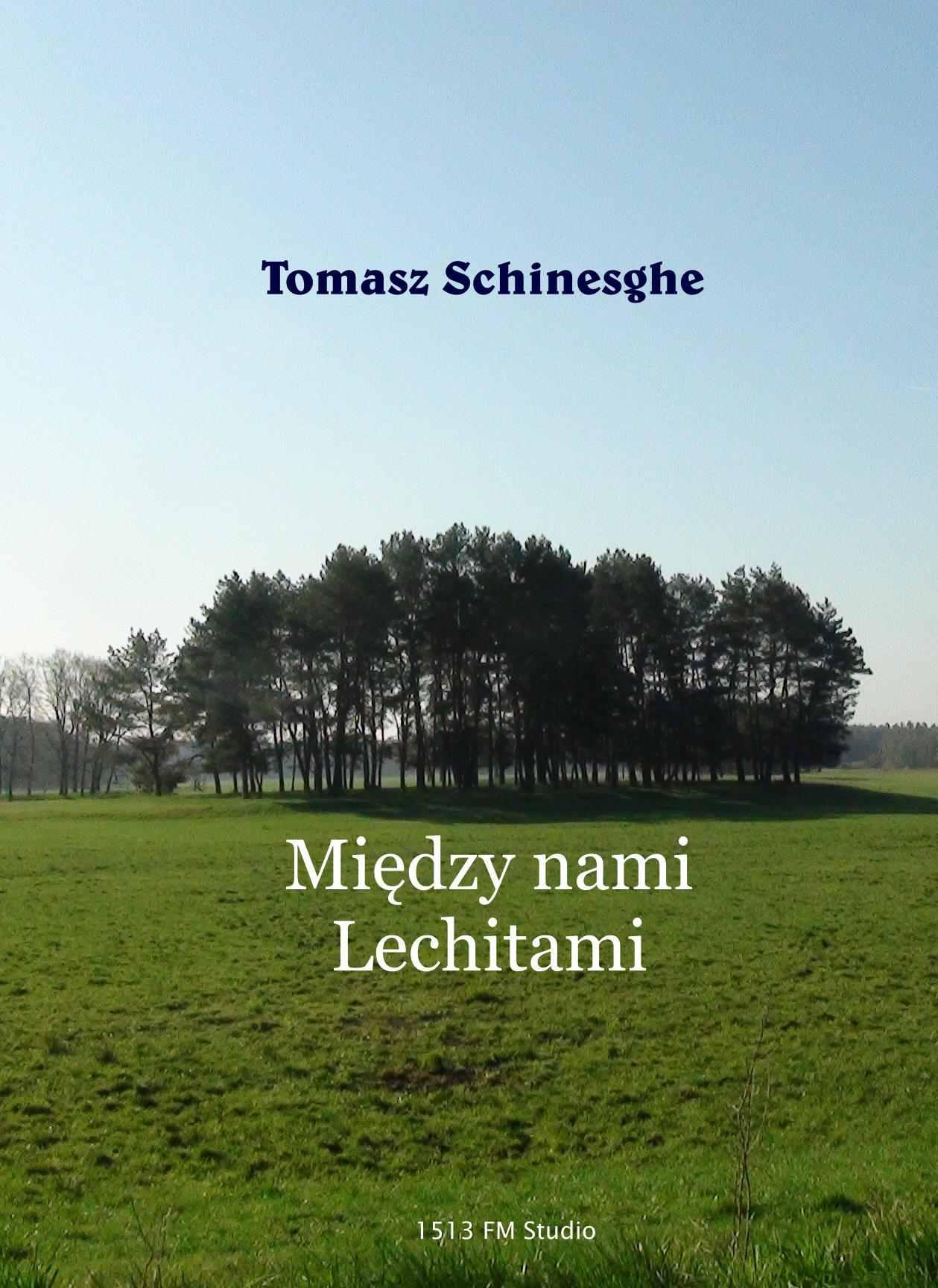 Między nami Lechitami - Ebook (Książka EPUB) do pobrania w formacie EPUB